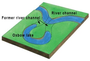 Oxbow lake, an image in Texas Aquatic Science by author Rudolph Rosen
