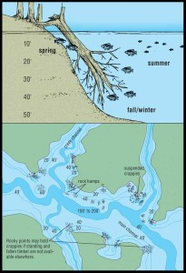 Fish habitat and reservoir structure, an image in Texas Aquatic Science by author Rudolph Rosen