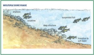 Fish habitat in different zones in a lake, an image in Texas Aquatic Science by author Rudolph Rosen