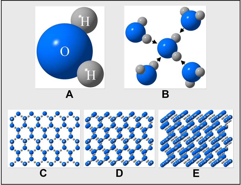 Molecule Project Water 1.2 — Water Molecules Are