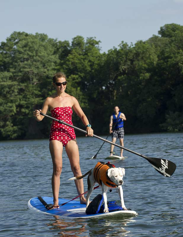 Stand-up paddleboard on Lake Travis, Austin, Texas, an image in Texas Aquatic Science by author Rudolph Rosen