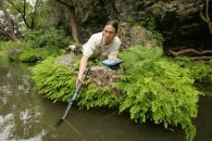 Water quality regulator, an image in Texas Aquatic Ecosystem Science by author Rudolph Rosen