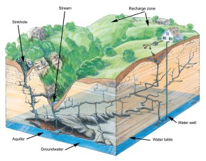 Groundwater recharge illustration, an image in Texas Aquatic Science by author Rudolph Rosen