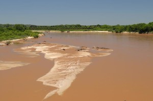 River sediment, an image in Texas Aquatic Science by author Rudolph Rosen