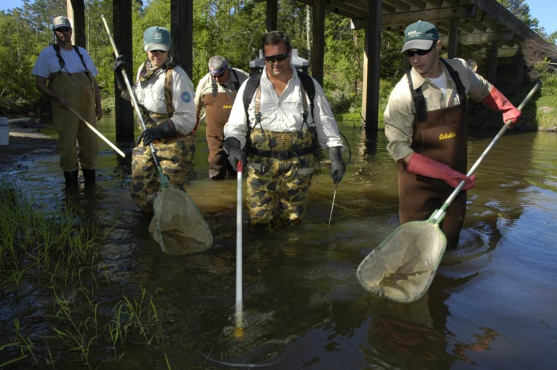 Fisheries biologists sampling fish, an image in Texas Aquatic Ecosystem Science by author Rudolph Rosen