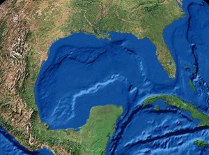 Map of Gulf of Mexico, an image in Texas Aquatic Science by author Rudolph Rosen