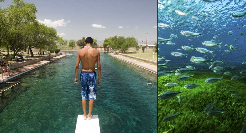 Aquifers and Springs - Texas Aquatic Science Curriculum - Rudolph Rosen