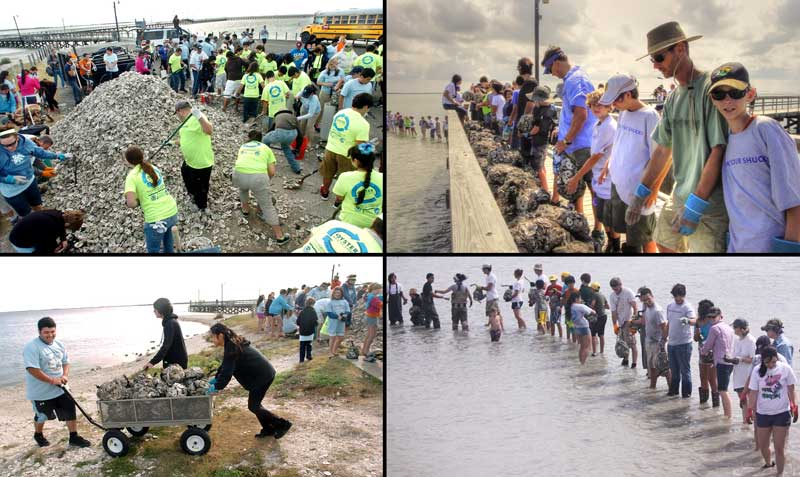 Students work to recycle an oyster reef, an image of a Texas Aquatic Science Class Project from the aquatic science textbook by author Rudolph Rosen. Photo credits: Harte Research Institute for Gulf of Mexico Studies, Corpus Christi Caller Times