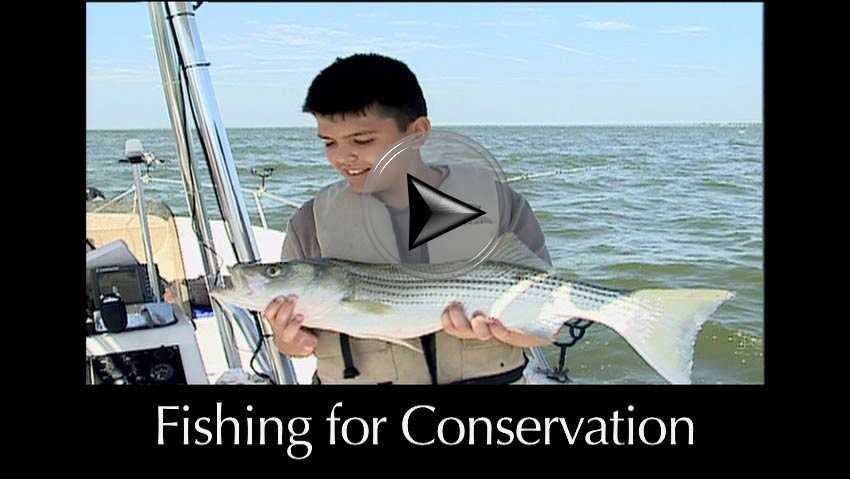 Fishing for Conservation a video in Texas Aquatic Science by author Rudolph Rosen