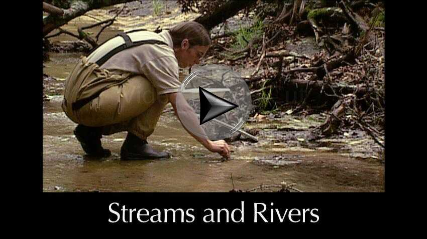 Streams and Rivers a video in Texas Aquatic Science by author Rudolph Rosen