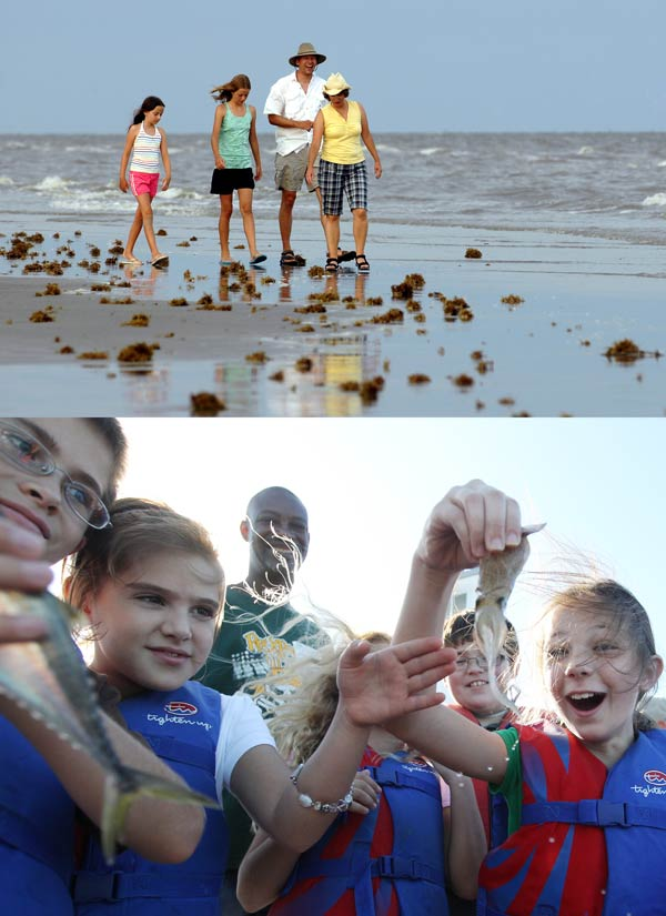 Beach and bay education, an image in Texas Aquatic Science by author Rudolph Rosen