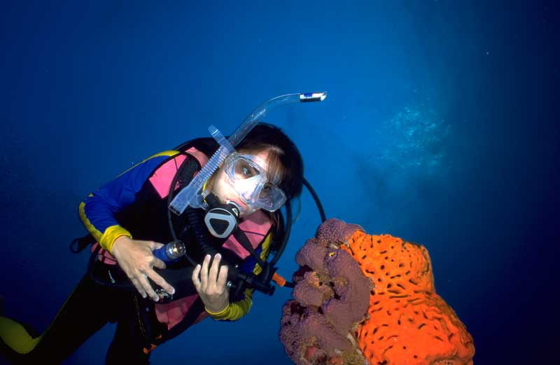 A young marine biologist in SCUBA gear looking at a marine coral, an image from Working and Careers in Water and Aquatic Science from the book Texas Aquatic Science by author Rudolph Rosen. Photo credit: Texas Parks and Wildlife Department