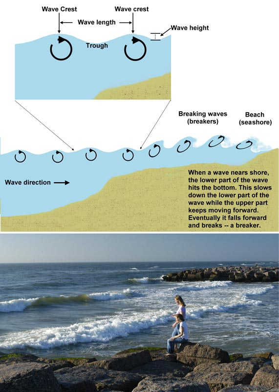 How waves form, an image in Texas Aquatic Science by author Rudolph Rosen