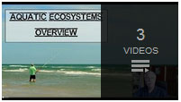 Closed Captioned aquatic ecosystems science lesson by rudy rosen