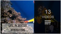 Closed Captioned Life in the Water science lesson by rudy rosen